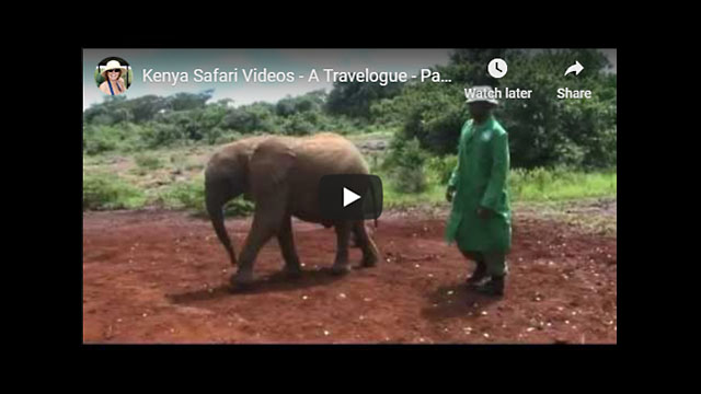 Kenya Safari Video - Africa Travelogue Part 2 | Nairobi Excursions