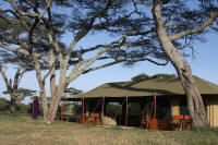 Lemala Serengeti Camp