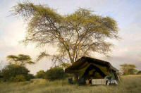Luxury Mobile Camping Safaris in Tanzania - www.photo-safaris.com