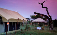 Serengeti Under Canvas - Family Safaris in Africa - Fun for everyone in the family - www.photo-safaris.com