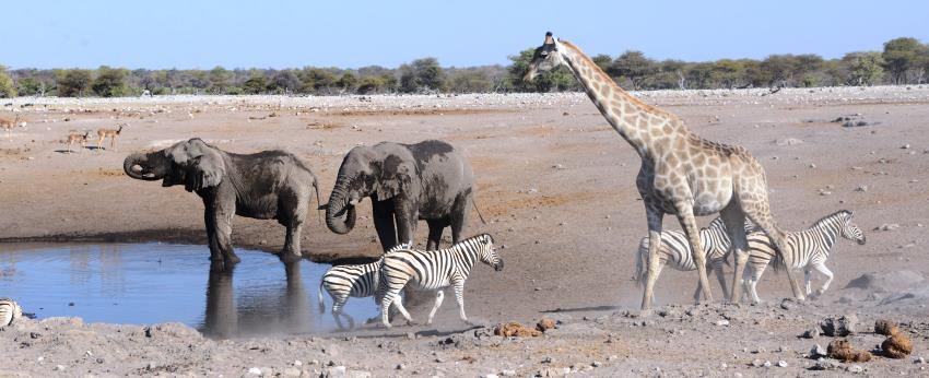 The Fort at Fishers Pan, Etosha, Namibia - www.photo-safaris.com