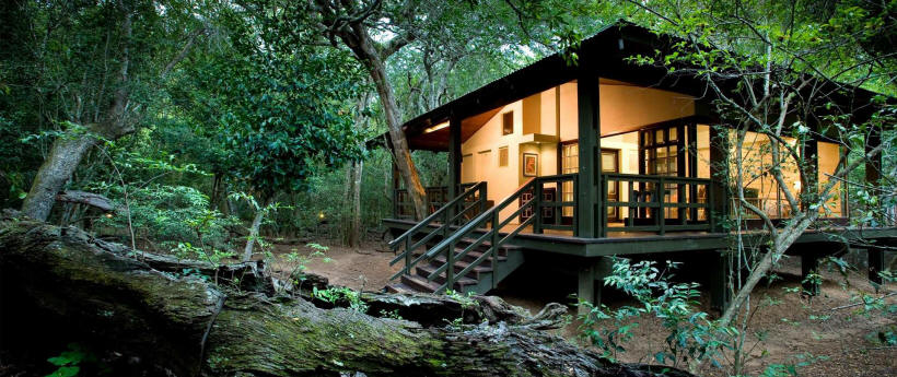Phinda Forest Lodge (Phinda Private Reserve, KwaZulu, Natal) South Africa - www.photo-safaris.com